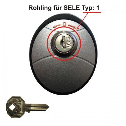 AS Torantriebe Schlüsselrohling zu Schlüsseltaster SELE Typ:1.